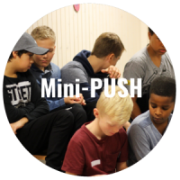 mini-push-300x300